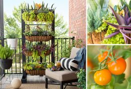 small-space-balcony-garden